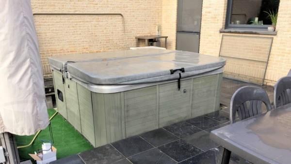 Ozonator vervangen en algehele controle van een Premium Leisure spa in Opwijk België